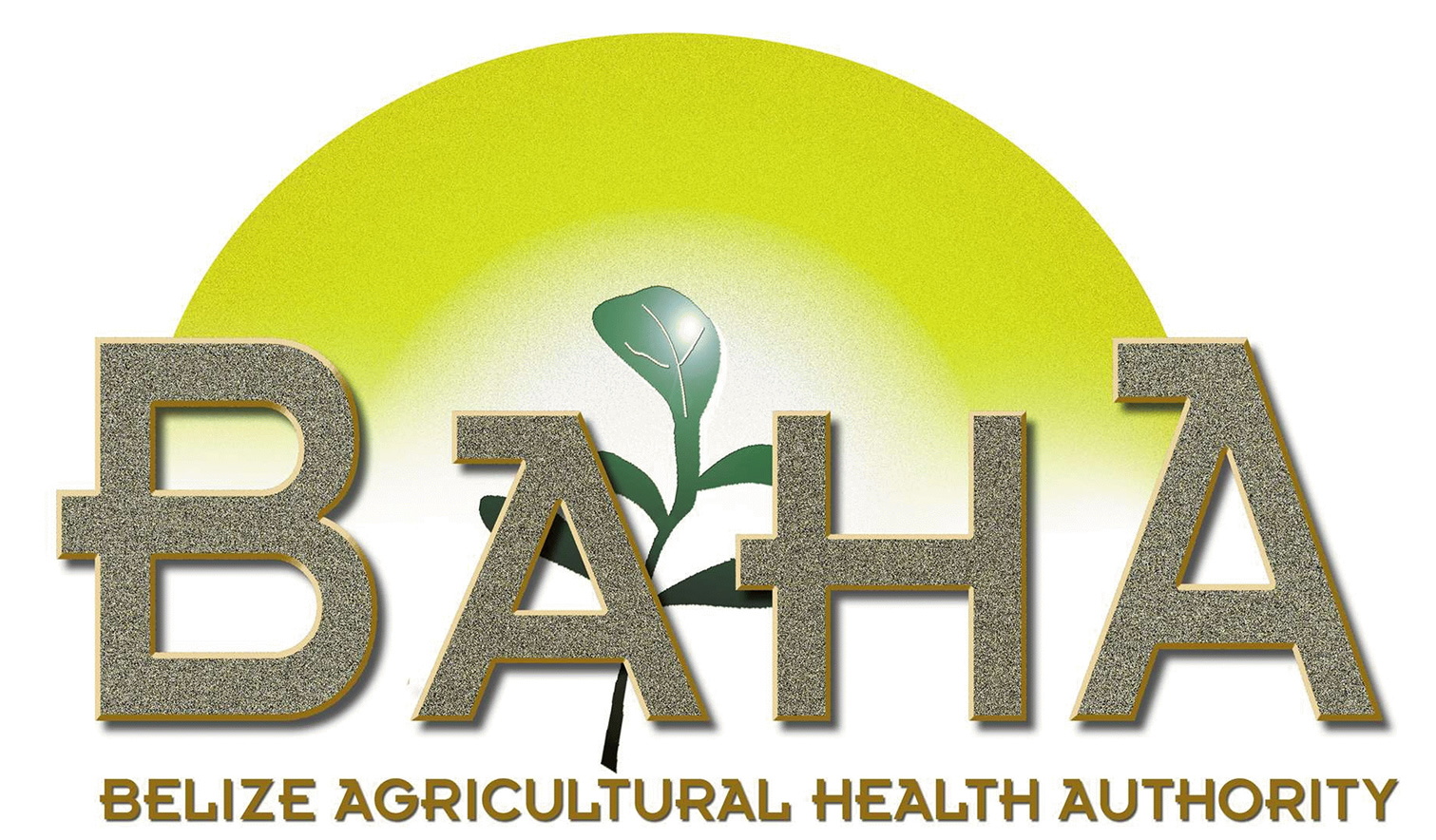 Belize Agricultural Health Authority
